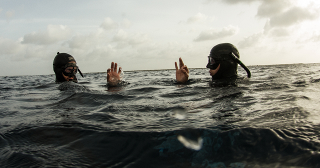 Freediving: FII Blog