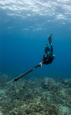 Spearfishing